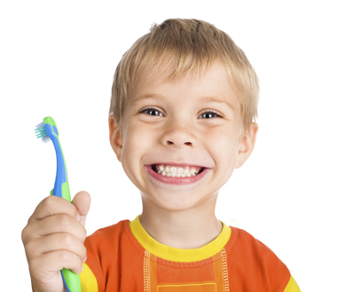 Young boy holding toothbrush while cleans teeth at Seidler Family Dentistry.